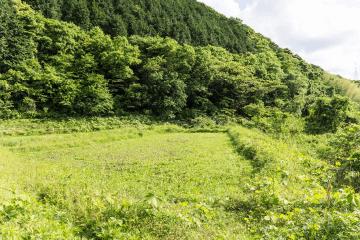 山口県土地