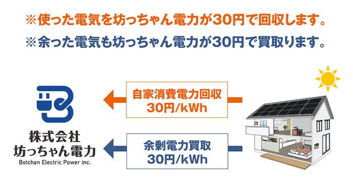 フリーソーラープロジェクト-発電払い