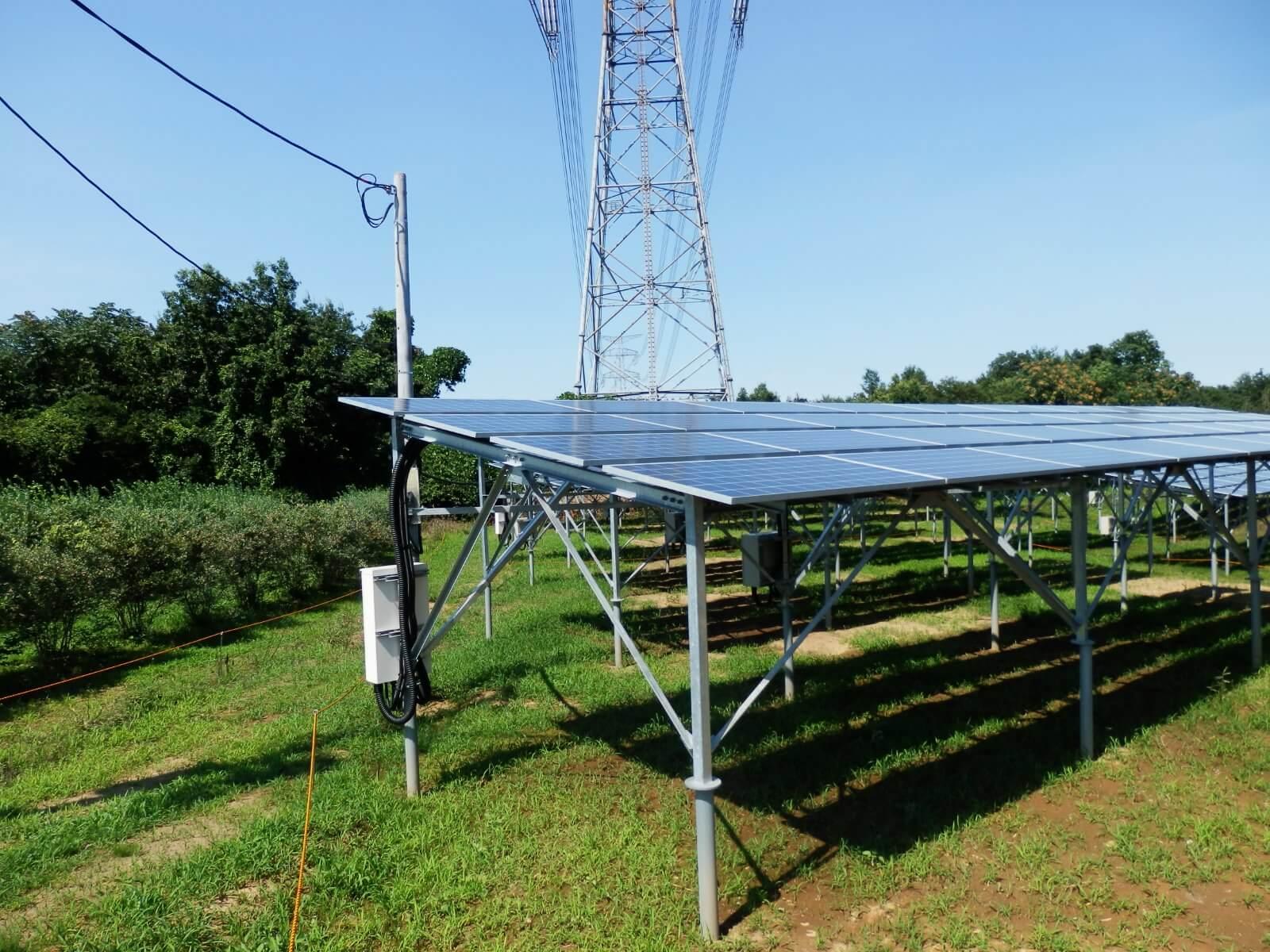 ソーラーシェアリング画像