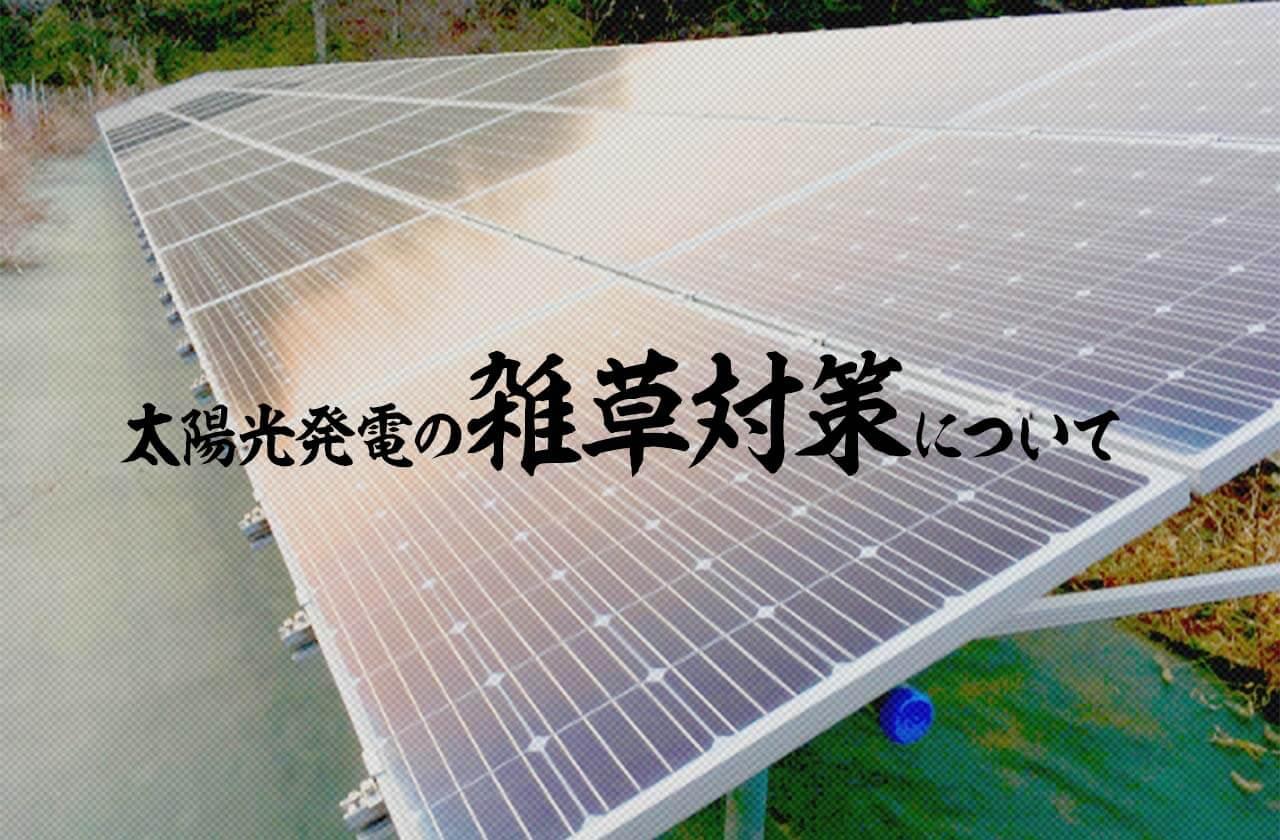 太陽光発電の雑草対策について詳しく解説